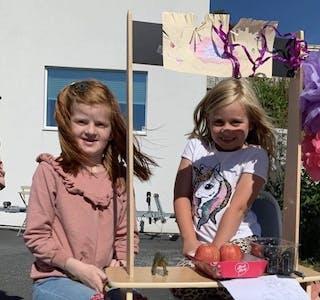 Lilly Aasbø og Hermine Kringlebotten Myge  solgte leiker, frukt, kjeks og snop til inntekt for Stine Sofie stiftelsen.  Foto: Privat